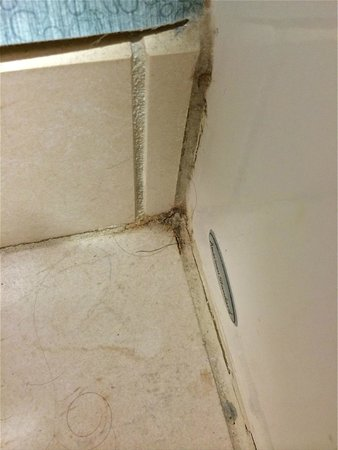 Hyatt Place Pittsburgh-North Shore: Hair on bathroom floor when we arrived!