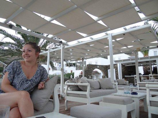 Alexandros Hotel: a coter de la pisicne,coter bar
