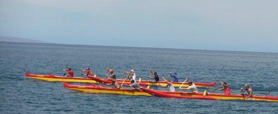 Kihei Kai Oceanfront Condos: Hawaiian canoers off Kihei Kai
