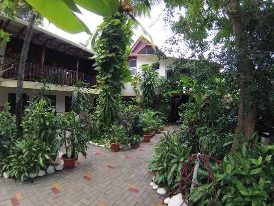 Hotel Belvedere - Playa Samara: Garden Courtyard at Hotel Belvedere
