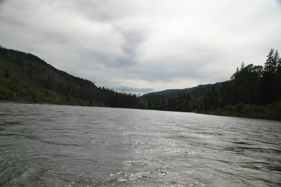 Barker-Ewing Whitewater: Day one floating down Snake River. Calm enough to bring your camera.