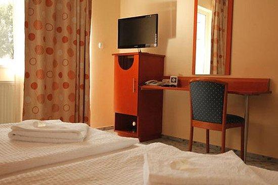 Szonyi Hotel : guest room