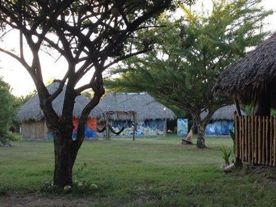 Rancho Esperanza: Our spacious grounds provides privacy no matter what the occupancy.  Left behind tree is a priva