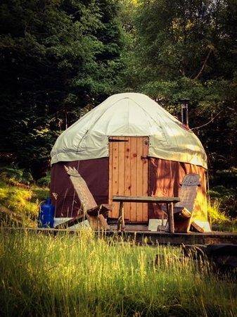 The Slate Shed B &B at Graig Wen: hidden yurt