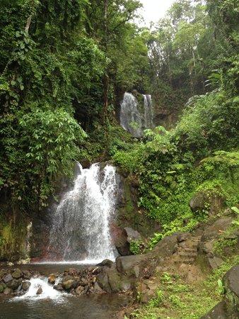 Blue River Resort & Hot Springs : Waterfall
