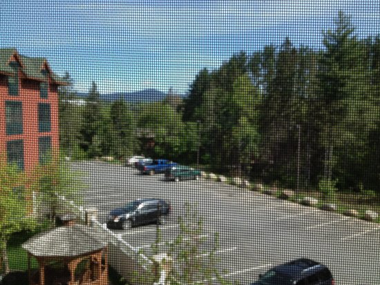Courtyard by Marriott Lake Placid : View from our room