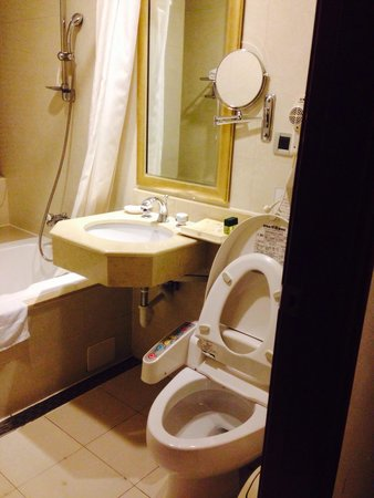 Rich Garden Hotel: 廁所是免治馬桶~太讚了