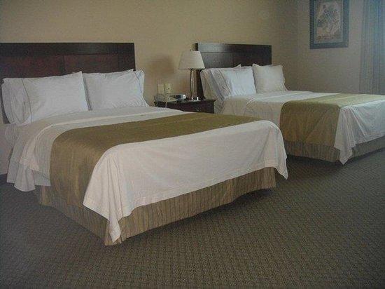 Hampton Inn by Hilton Tampico Zona Dorada: Guest Room