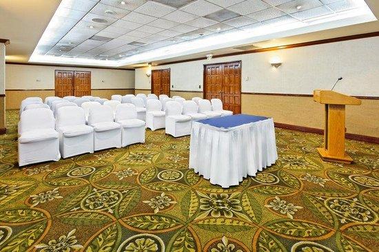 Holiday Inn Express Galerias San Jeronimo: Meeting Room