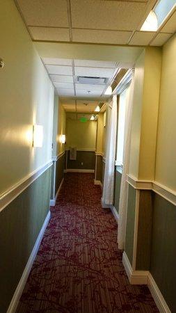 Hotel Indigo Nashville: Hall