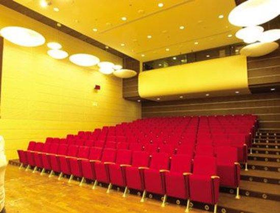 Ramada Sibiu: Meeting Amphitheatre