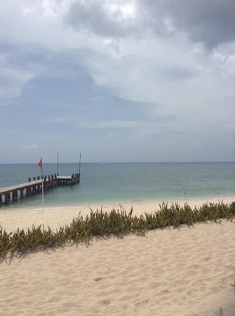 Royal Level at Occidental Cozumel: occidental grand - beach front and pier