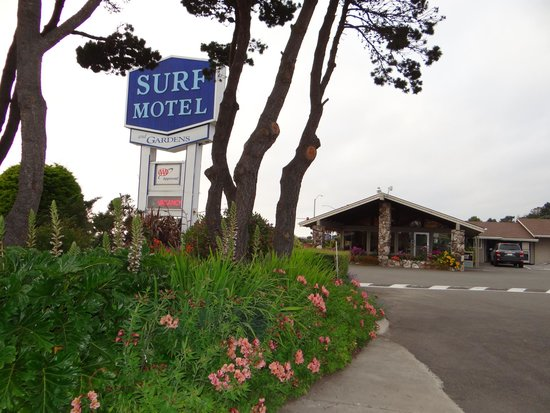 Surf Motel and Gardens : Office and hotel sign