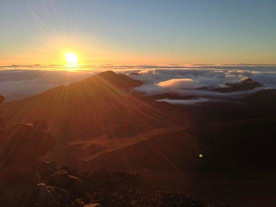 Bike Maui : Sunrise