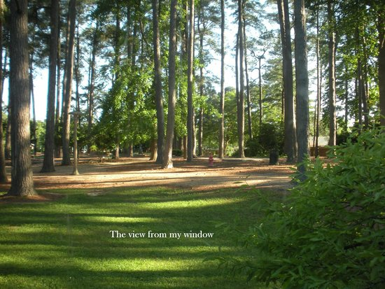 Woodlands Hotel & Suites - Colonial Williamsburg: Trees, breeze and birds!