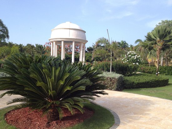 Dreams Punta Cana Resort & Spa: Beauty