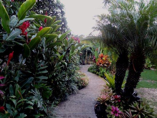 Pineapple Inn : The grounds are lovely