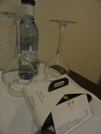 Hotel Jerez & Spa: Boas vindas