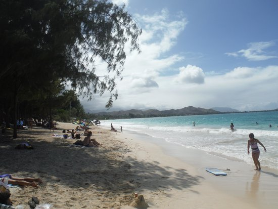 Kailua Beach Park : shady beaches