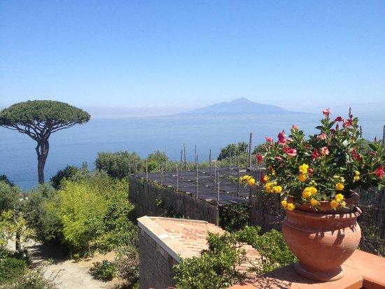 """Agriturismo """"Il Giardino di Vigliano"""": View from the terrace to Mount Vesuvius"""