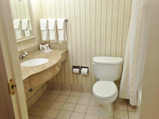 Hilton Garden Inn Milwaukee Park Place : Clean bathroom