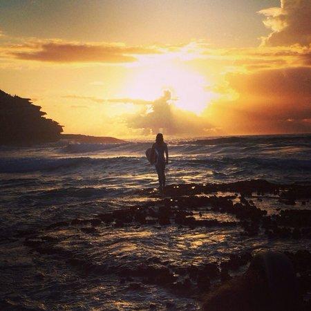 Bondi to Coogee Beach Coastal Walk : Maccas. Mackenzie's bay 6am