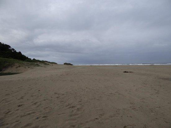 Best Western Agate Beach Inn : Looking down the beach