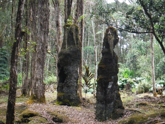 Lava Tree State Park : Twin lava trees