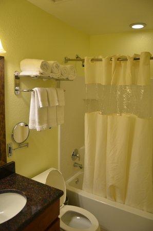 BEST WESTERN PREMIER Saratoga Resort Villas: Banheiro