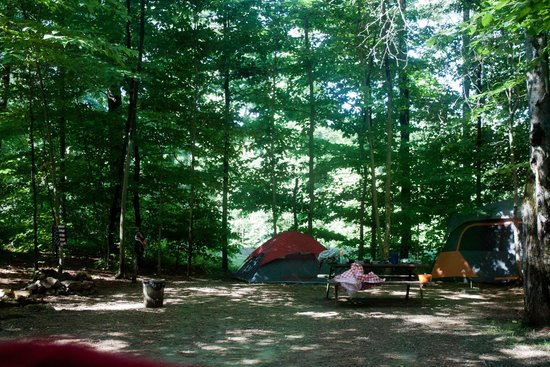 Clearwater Campground: site # 14