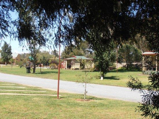 Narrandera Caravan Park: caravan site