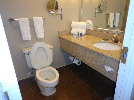 Grand Orlando Resort at Celebration: bathroom