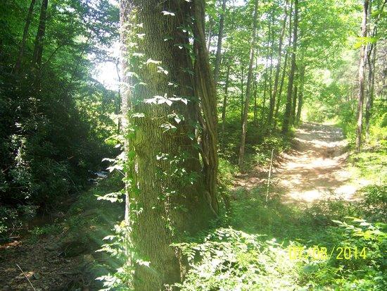 Hidden Creek Camping Resort: Nature Trial