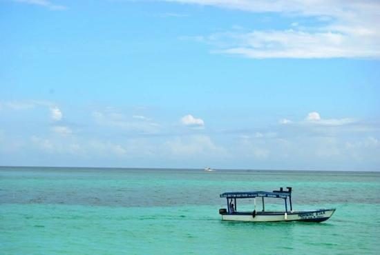 Royal Decameron Montego Beach : Morning Star