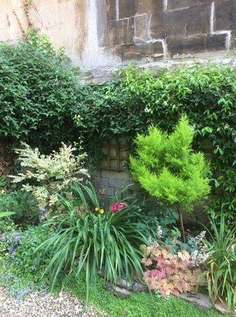Number 77 : garden