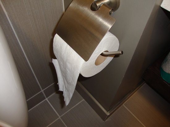 Wyndham Garden Buffalo Williamsville: Modern Toilet Paper Holder