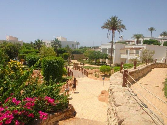 Renaissance Sharm El Sheikh Golden View Beach Resort : vista