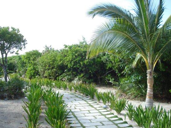 Royalton Cayo Santa Maria : Site