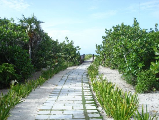 Royalton Cayo Santa Maria: Allée vers la plage