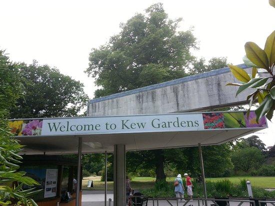 Royal Botanic Gardens Kew: Beautiful Garden!