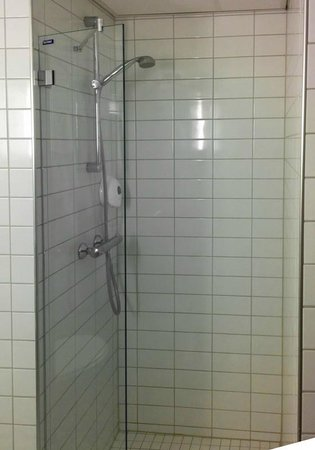 Park Inn by Radisson Oslo: The shower door is too small to stop water to spread all over the floor.