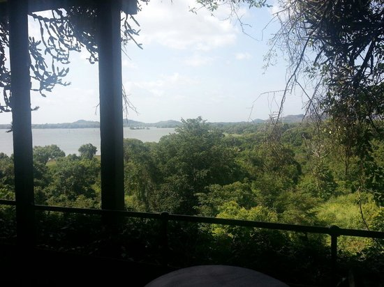Heritance Kandalama : View from the room
