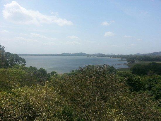Heritance Kandalama : Lake view