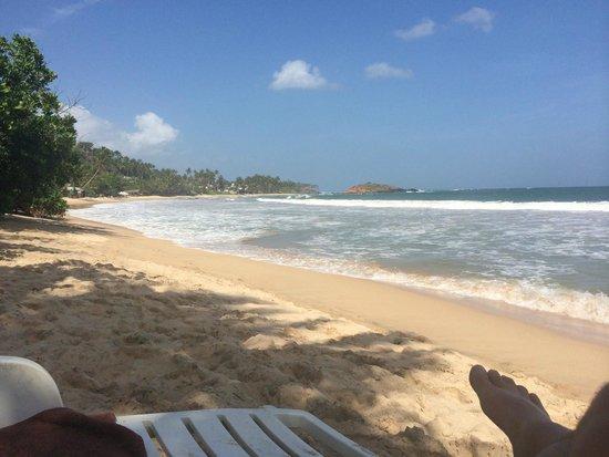 Paradise Beach Club: Mirissa Beach in front of hotel
