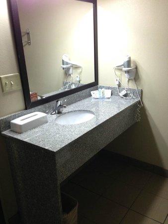 Comfort Inn & Suites : Bathroom vanity