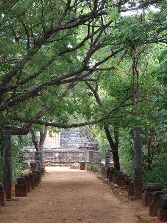 Nalanda Gedige : Approach lane to temple