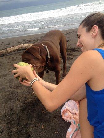 Sandpiper Hotel: cory loves coconuts