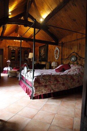 Le Relais de la Tour: Our beautiful big comfy room.