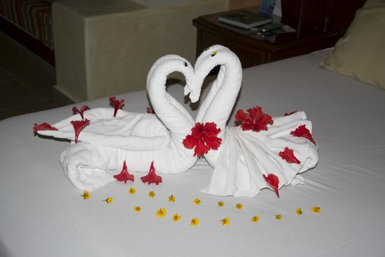 Grand Bahia Principe Coba: Wonderful Towel Creations Each Day