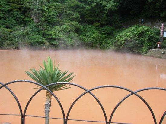 Hells of Beppu : 血の池地獄